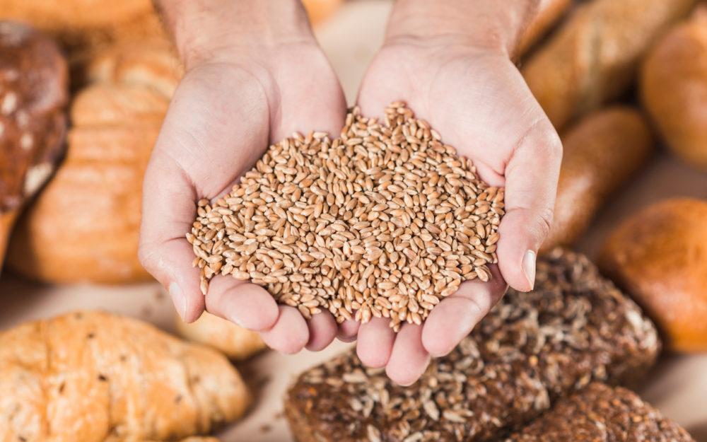 Getreide und Brot