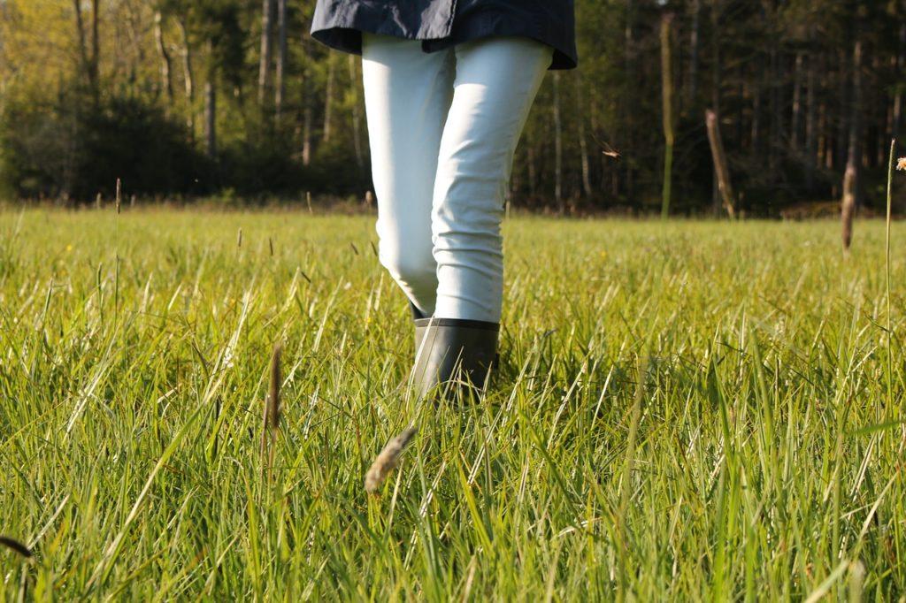 Aktiv in den Frühling - Spaziergang